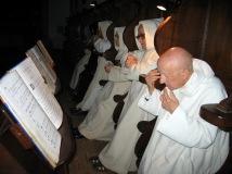 negli stalli del coro