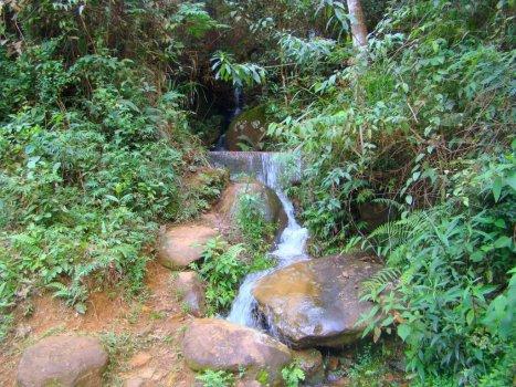 una cascata tra la natura incontaminata