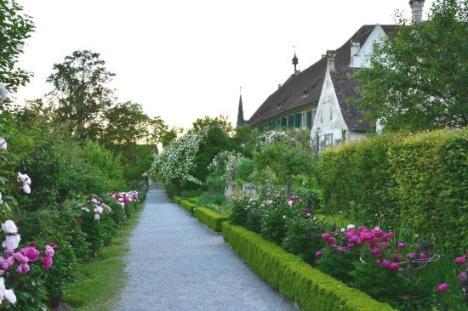 62 kartause-ittingen viale fiorito tra antiche celle