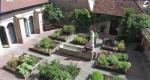 giardino officinale dall'alto