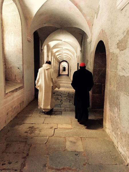 cardinal-sarah-abbaye_article_large