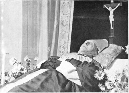 Cardinale Vidal